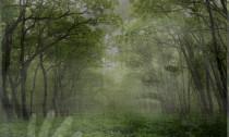 fenomeni-paranormali-entita-astrali